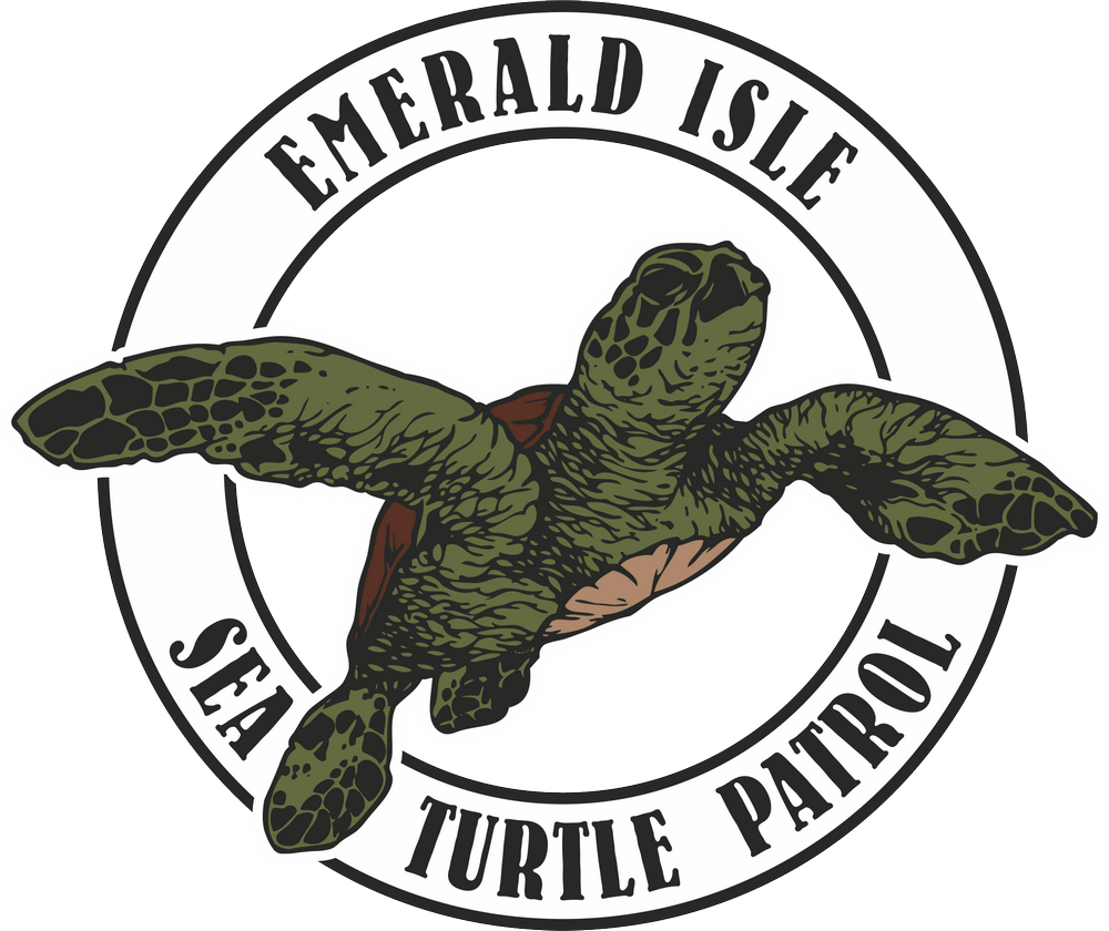Sea Turtle Patrol-Emerald Isle